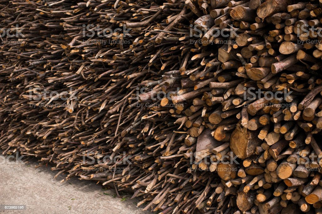 Collected Woods, Rize. Turkey stock photo