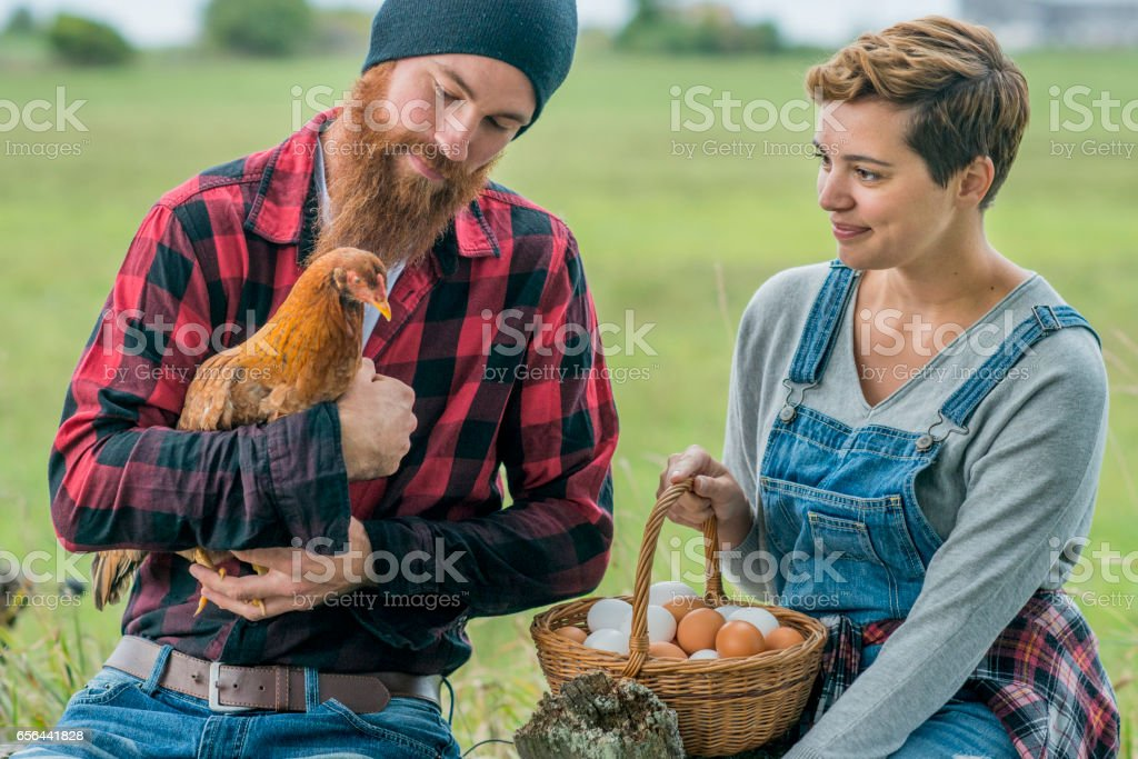 Collecting a Basket of Eggs stock photo