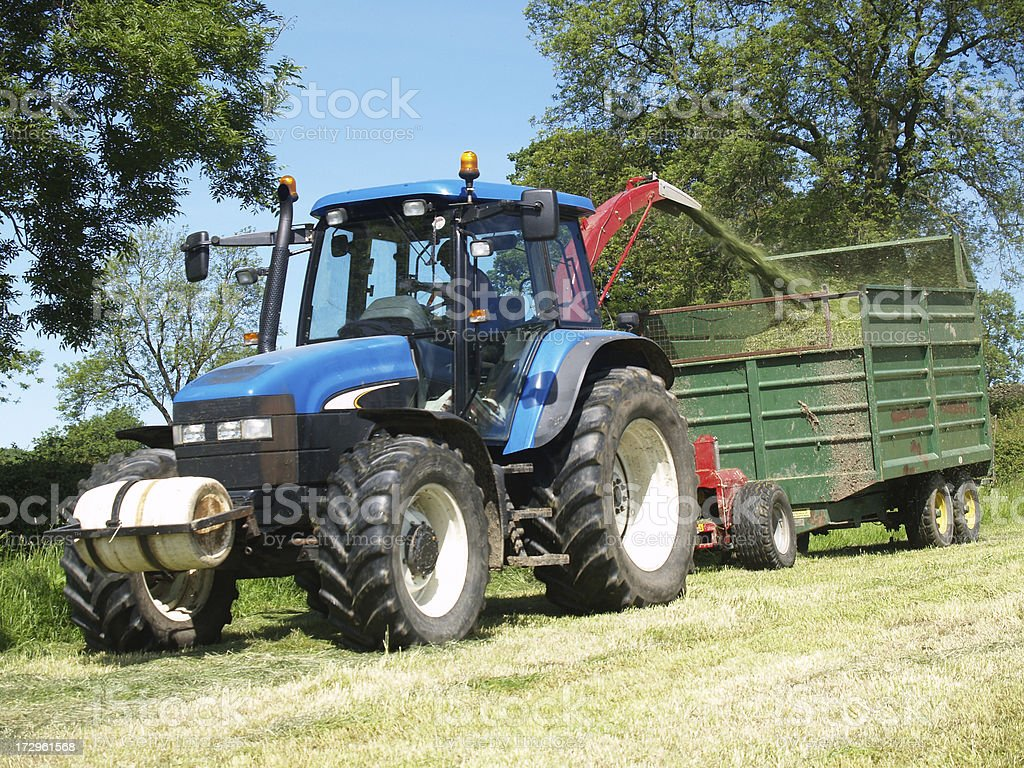 Collecting Silage royalty-free stock photo