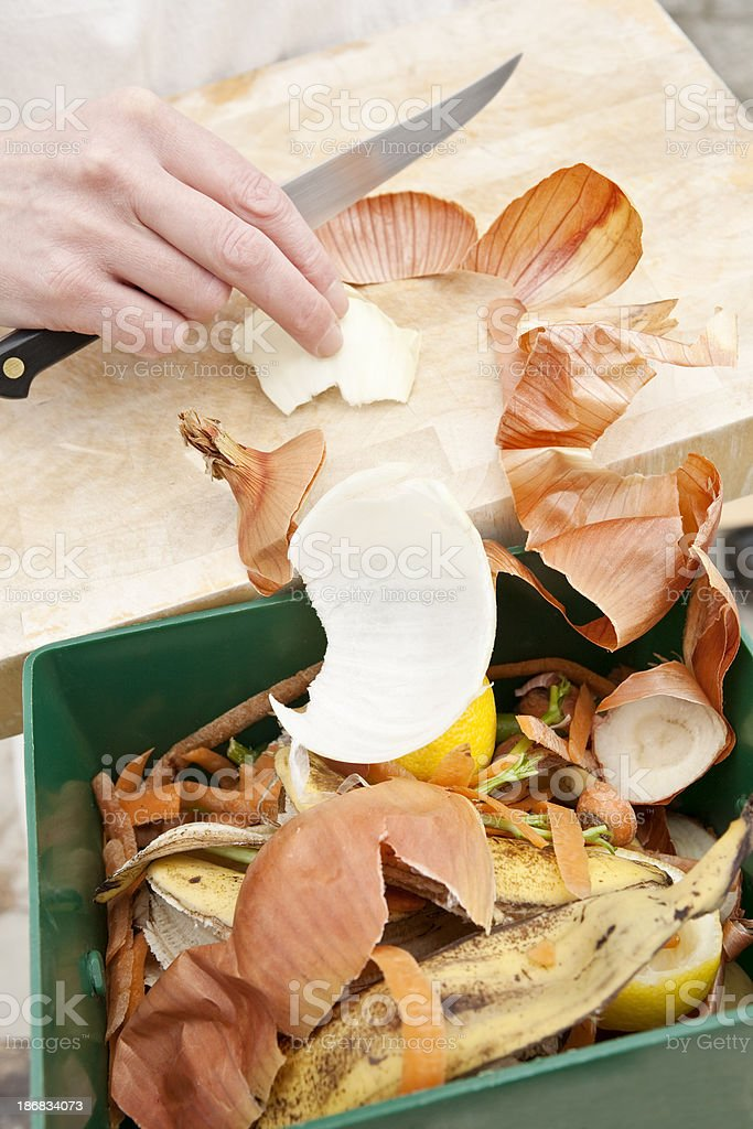 Collecting vegetable scraps royalty-free stock photo