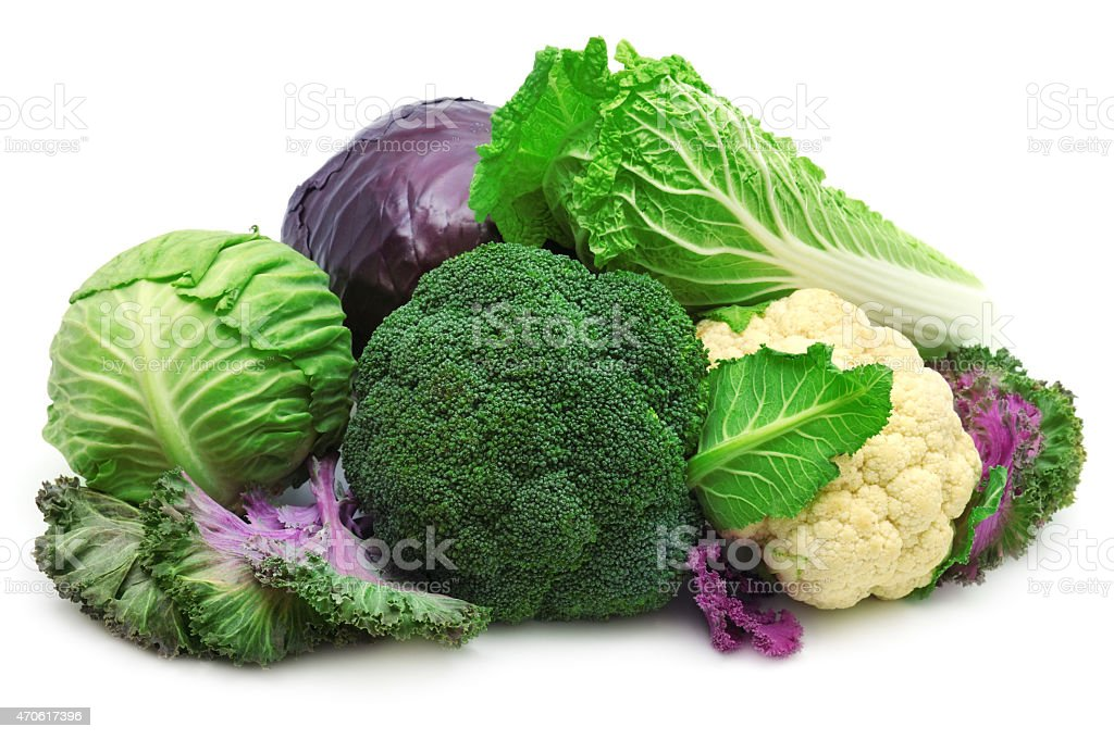 collection cabbage stock photo