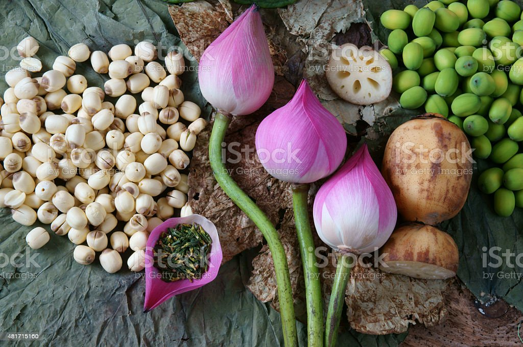 Collection lotus flower, seed, tea, healthy food stock photo