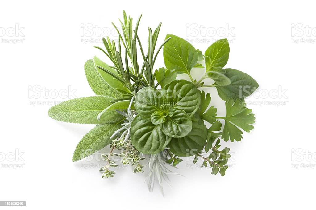 Collection of fresh herbs royalty-free stock photo