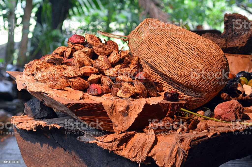 Collection of fruit and seeds food eaten by indigenous Austr stock photo