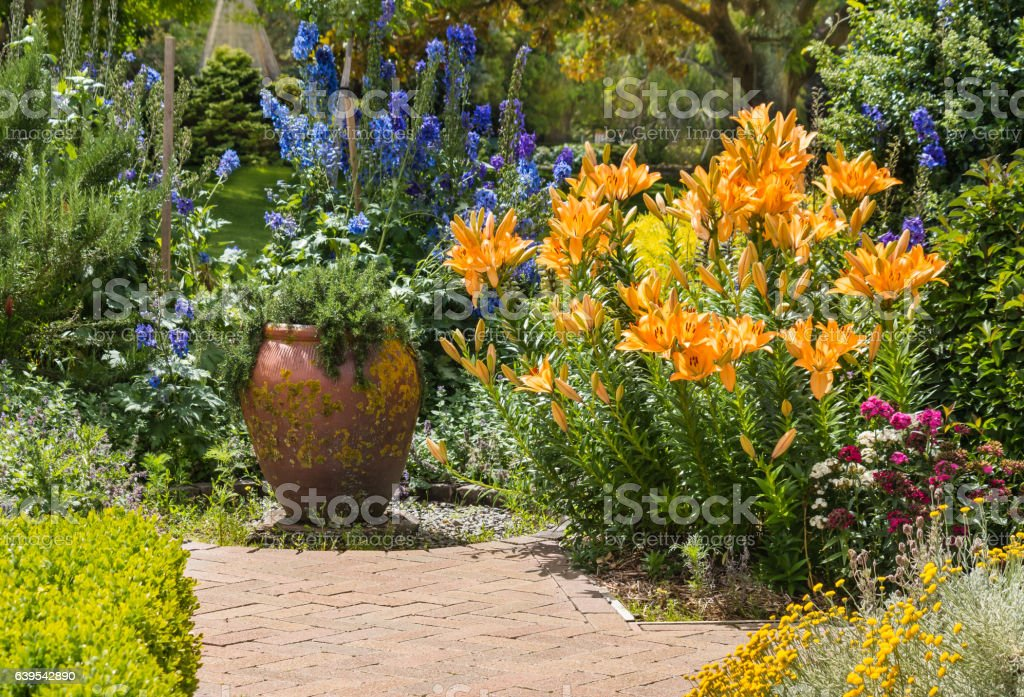 collection of garden flowers in bloom in english garden stock photo