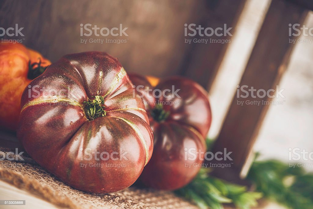 Collection of heirloom tomatoes. Organic homegrown fresh tomatoes. Healthy eating. stock photo