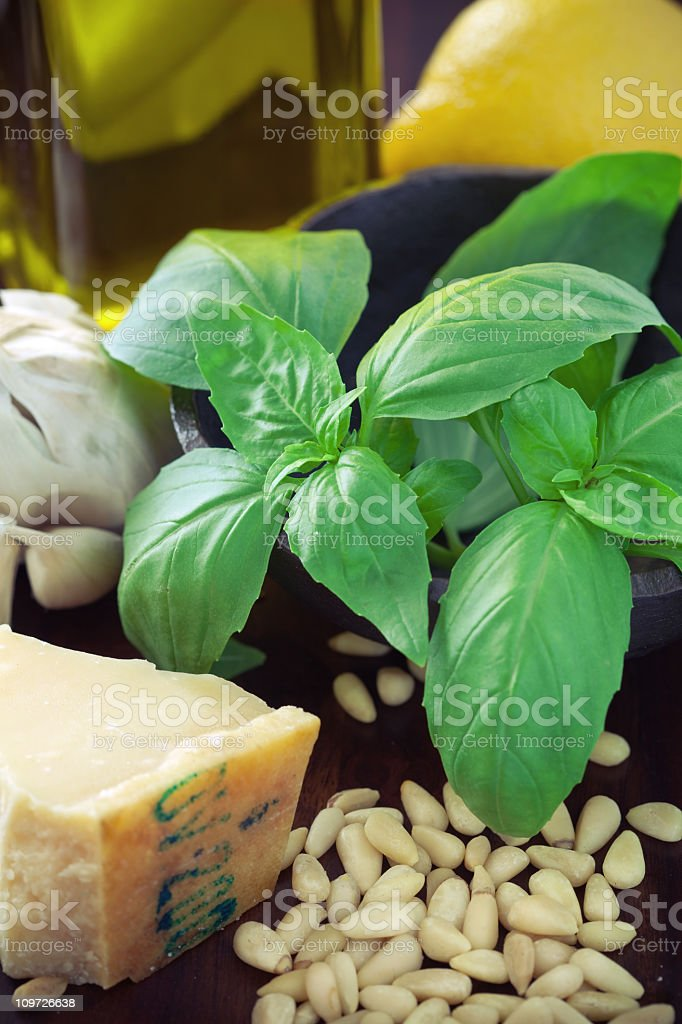 Collection of ingredients to make pesto royalty-free stock photo