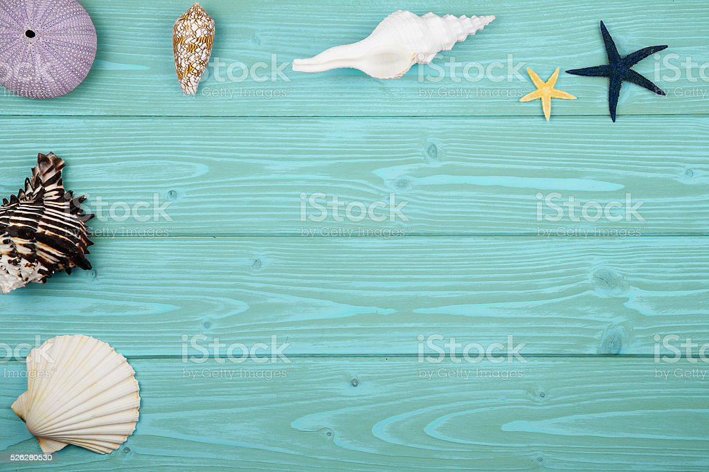 collection of shells on wood stock photo