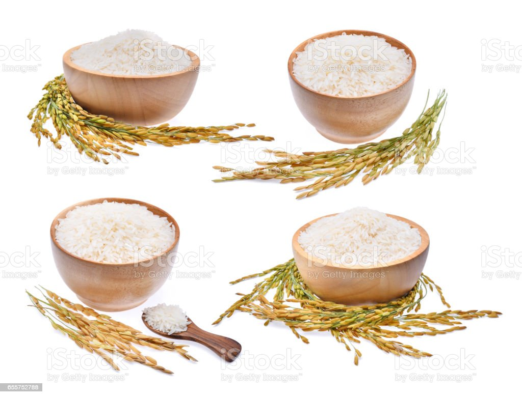 collection of white rice and unmilled rice isolated on white stock photo