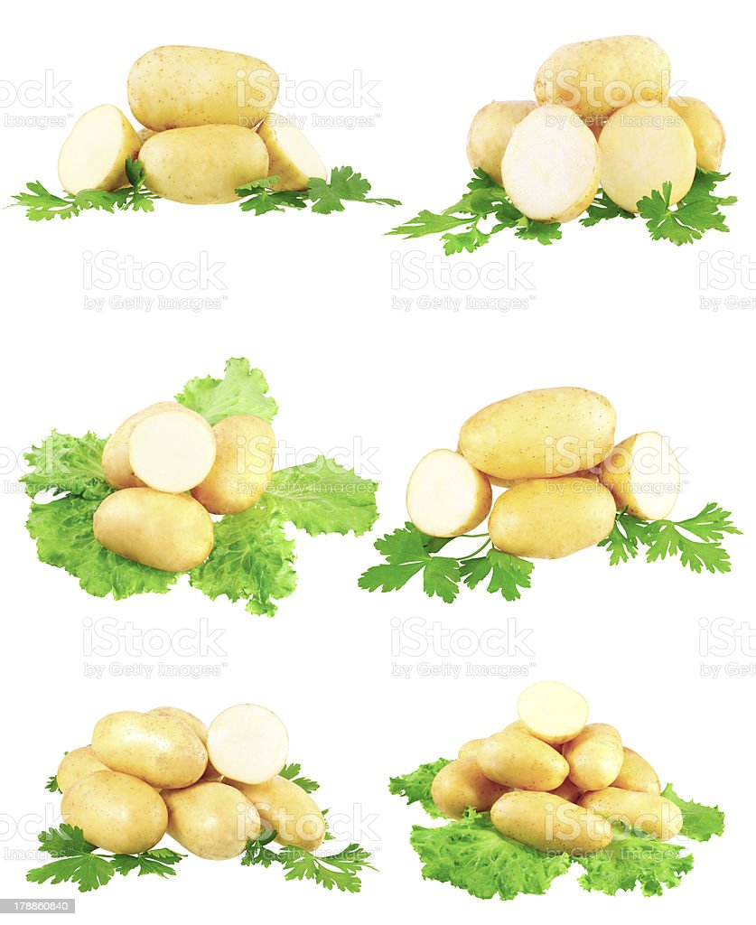 Collection of young potatoes, parsley . Isolated stock photo
