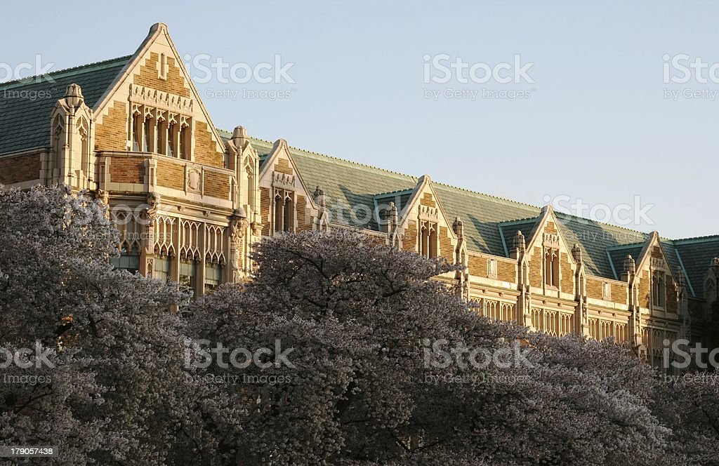 College campus in Spring stock photo