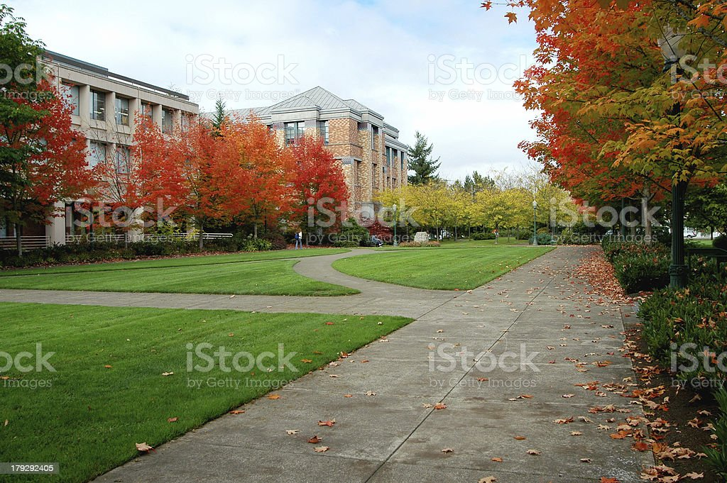 College Campus in the Fall stock photo