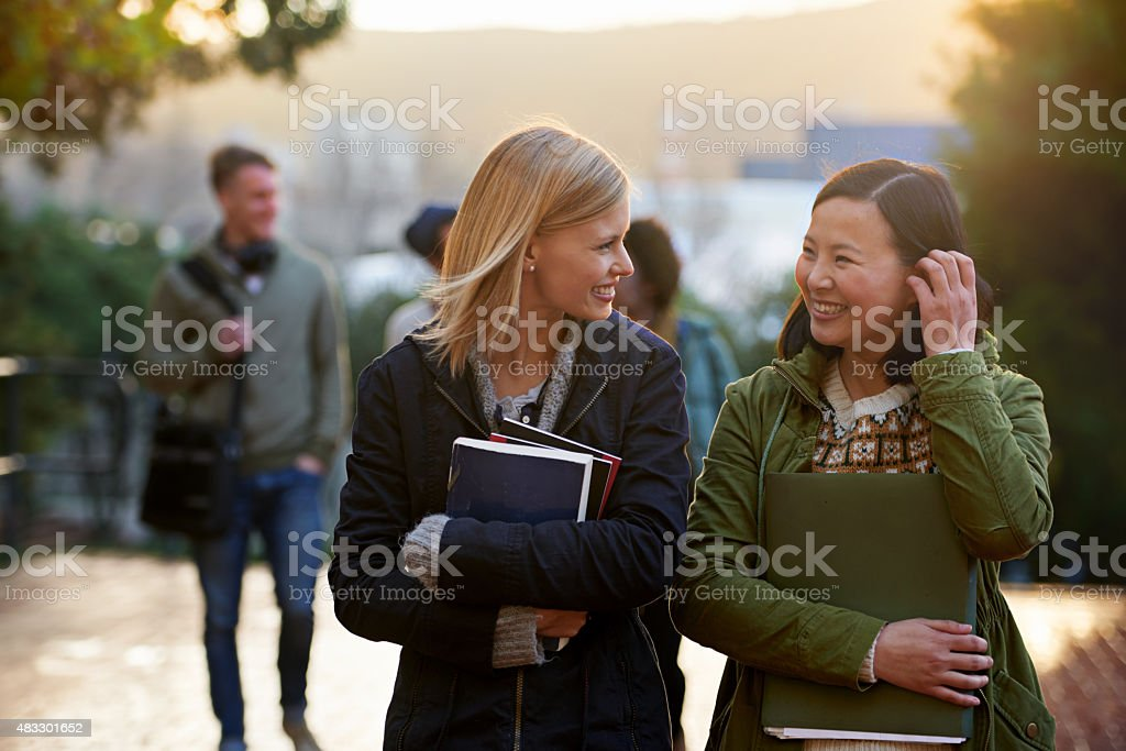 College life stock photo