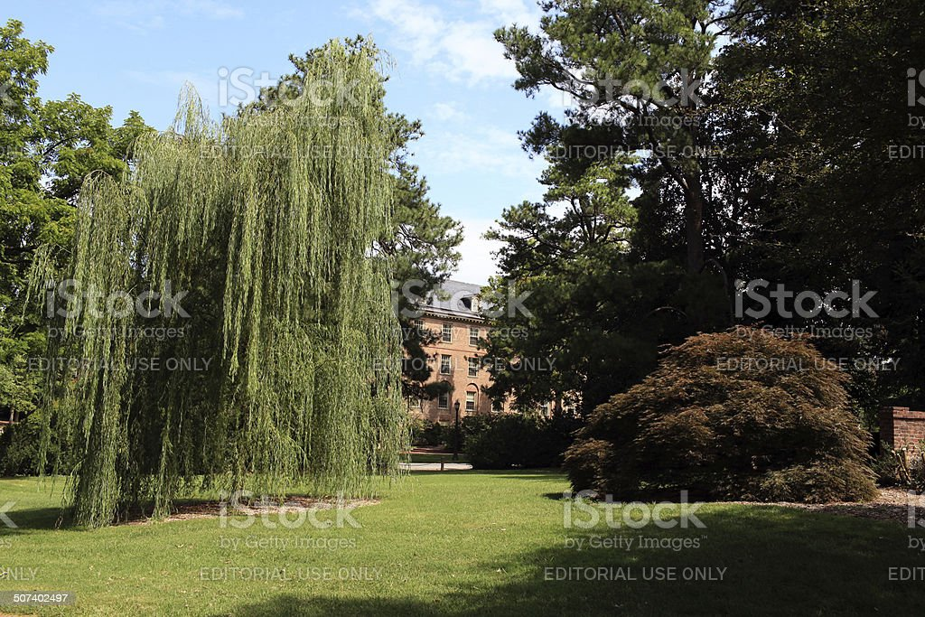 College of William and Mary Campus Grounds stock photo