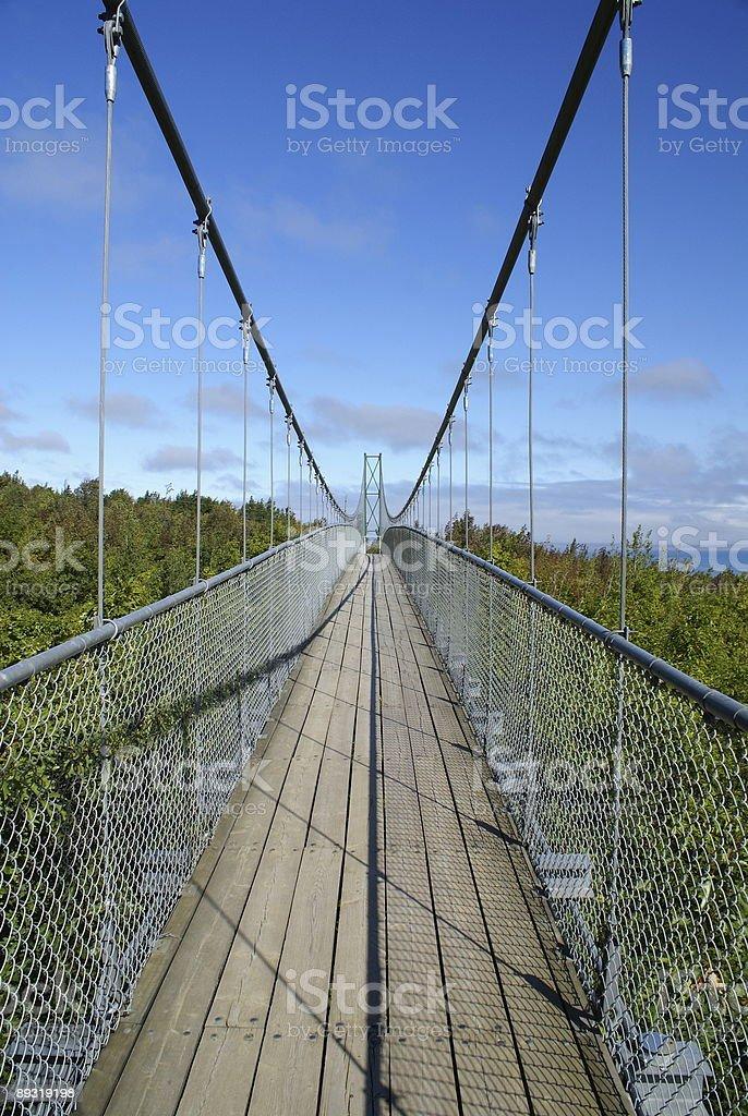 Collingwood Suspension Footbridge royalty-free stock photo