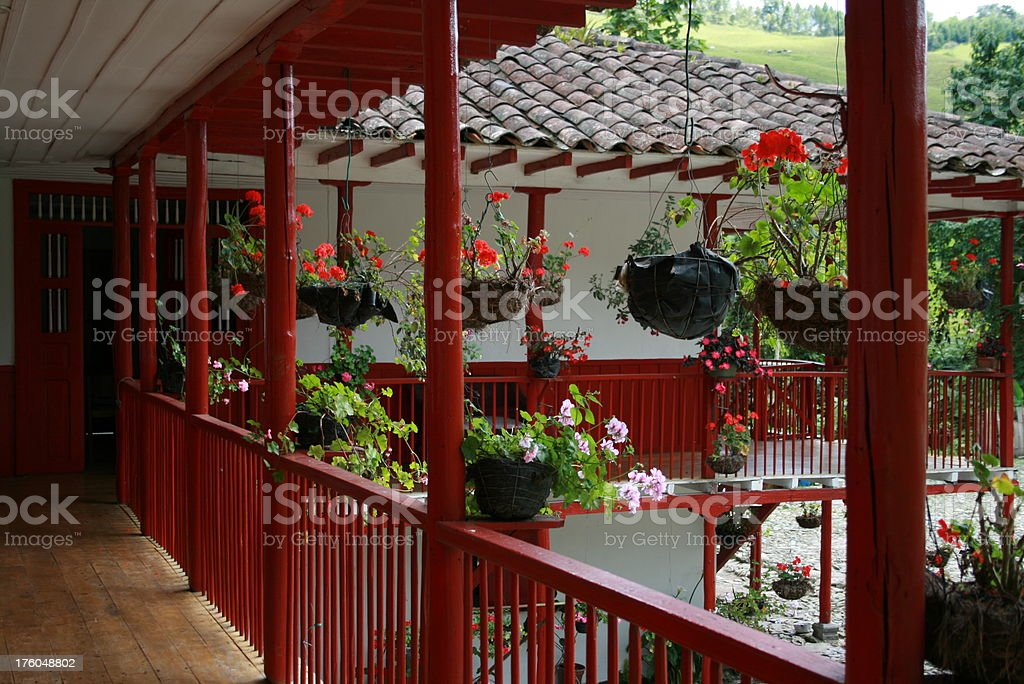 colombian coffee farm stock photo