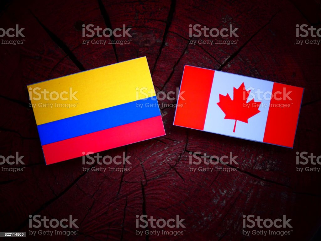 Colombian flag with Canadian flag on a tree stump isolated stock photo
