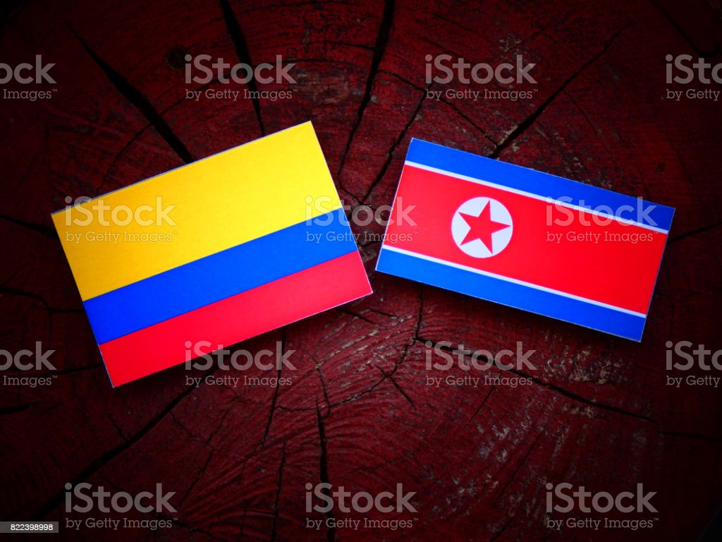 Colombian flag with North Korean flag on a tree stump isolated stock photo