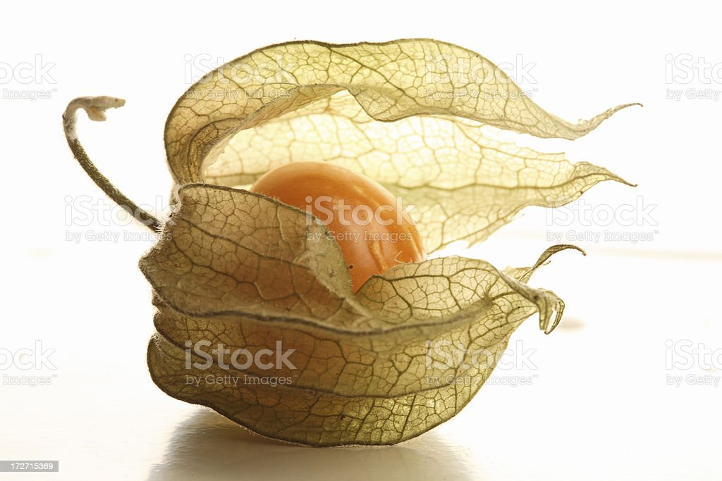 colombian golden berry royalty-free stock photo