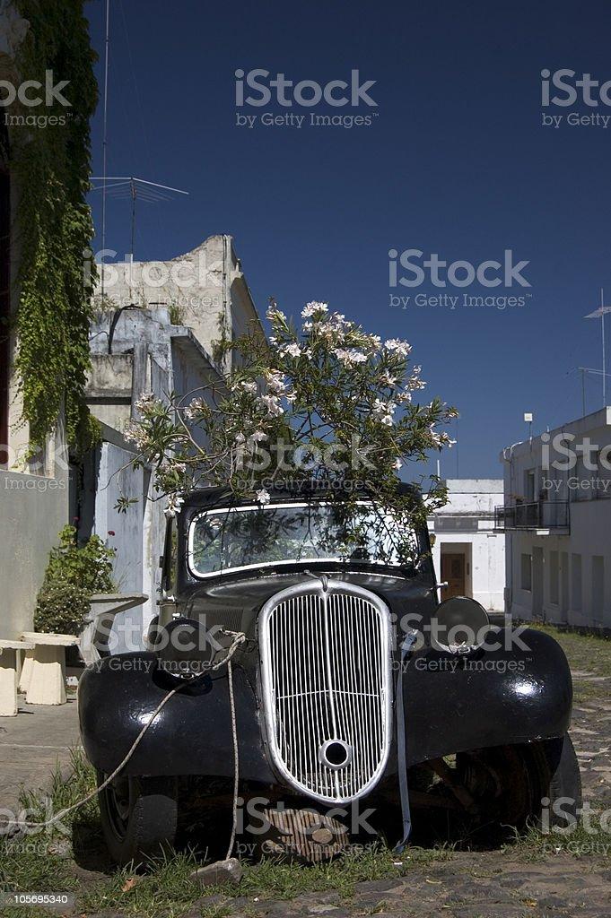 Colonia Car royalty-free stock photo