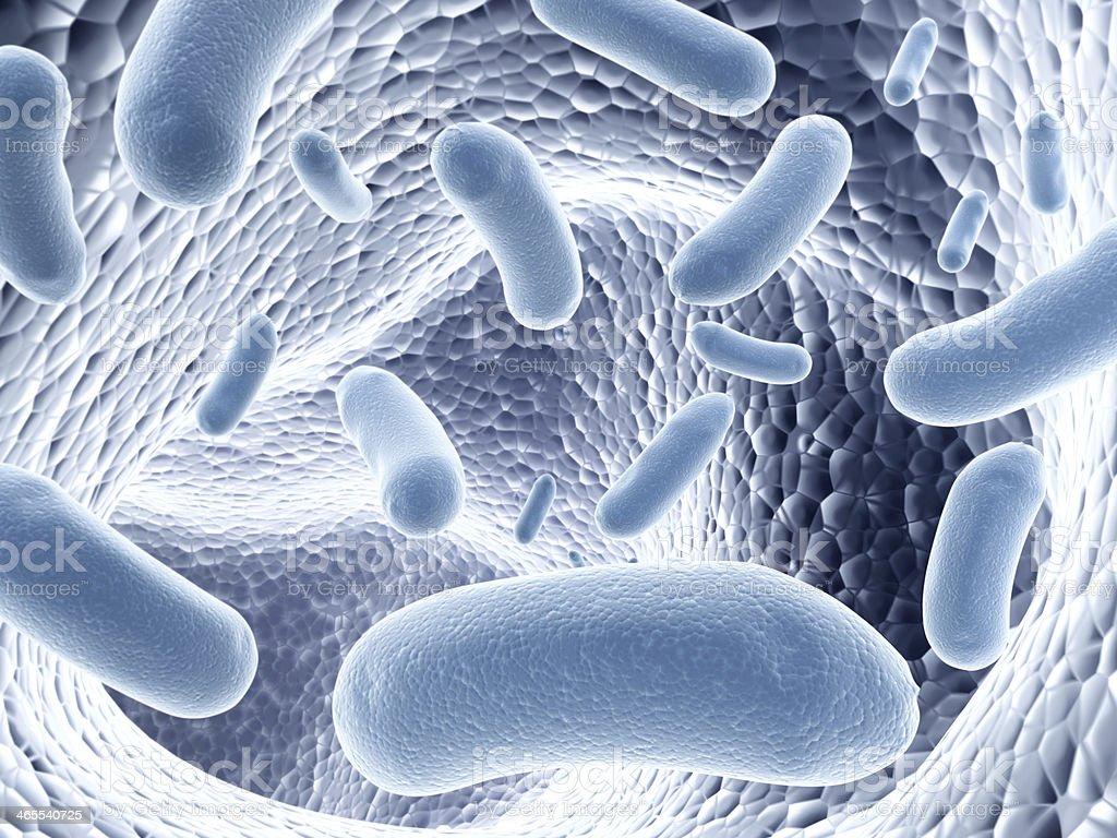 Colony of bacteria royalty-free stock photo