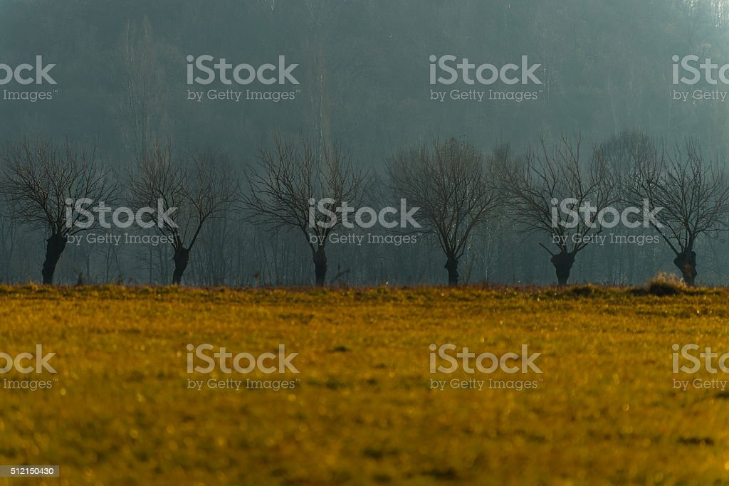 color contrasts stock photo
