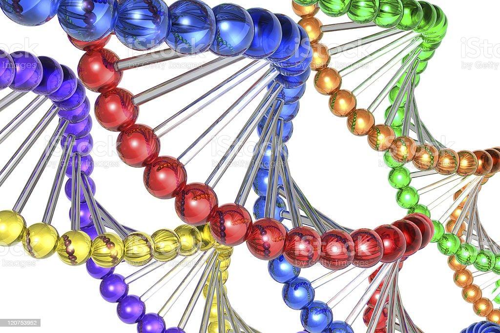 Color DNA molecules royalty-free stock photo