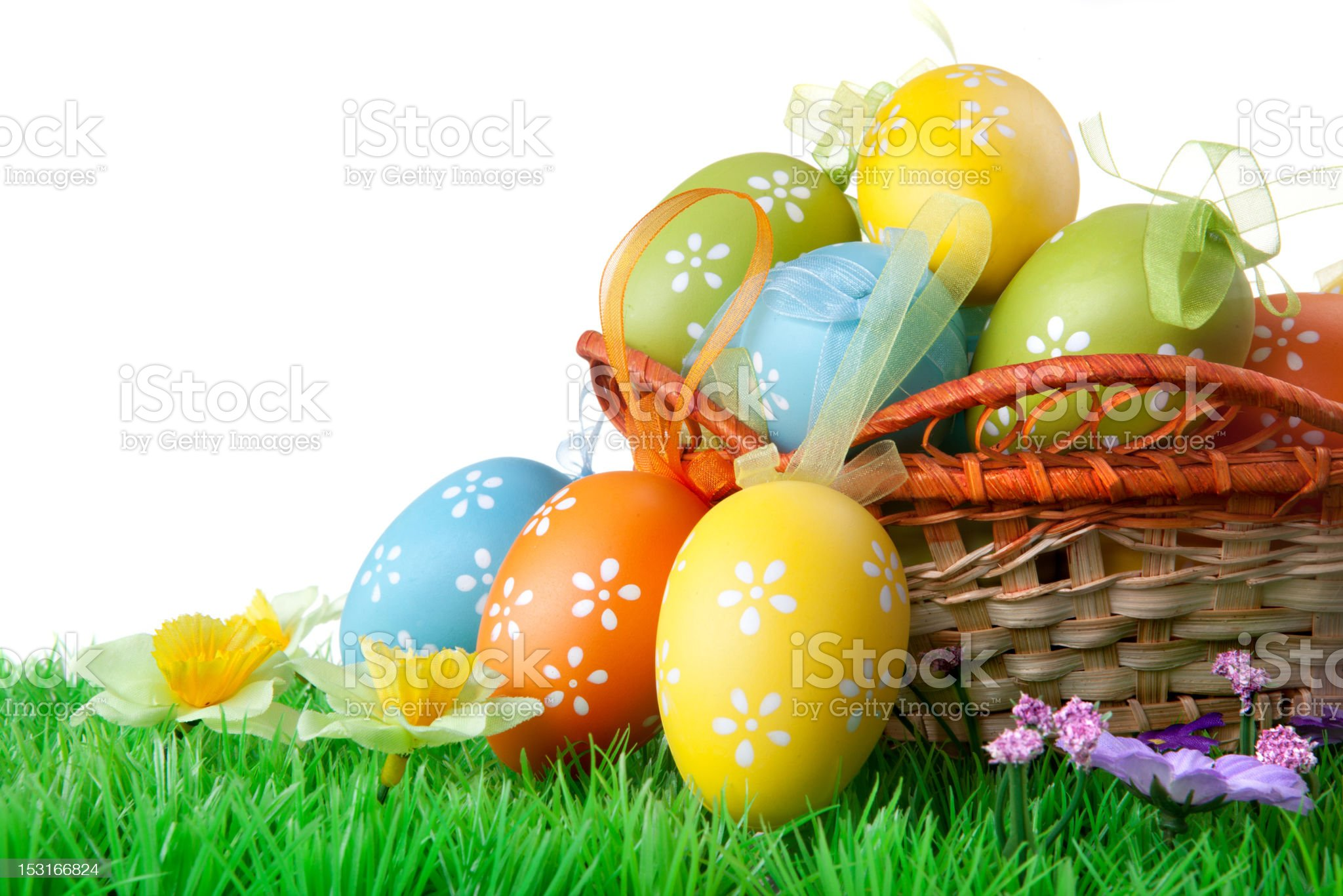 color easter eggs with green grass on the white royalty-free stock photo