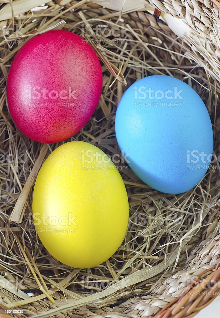 color eggs royalty-free stock photo