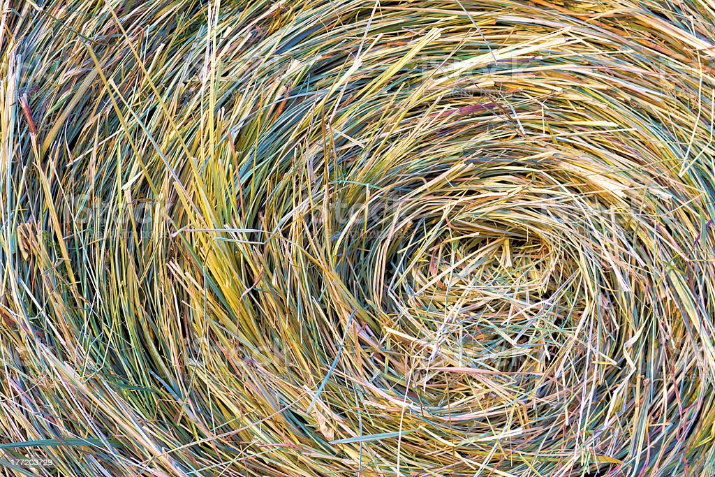 Color hay roll royalty-free stock photo