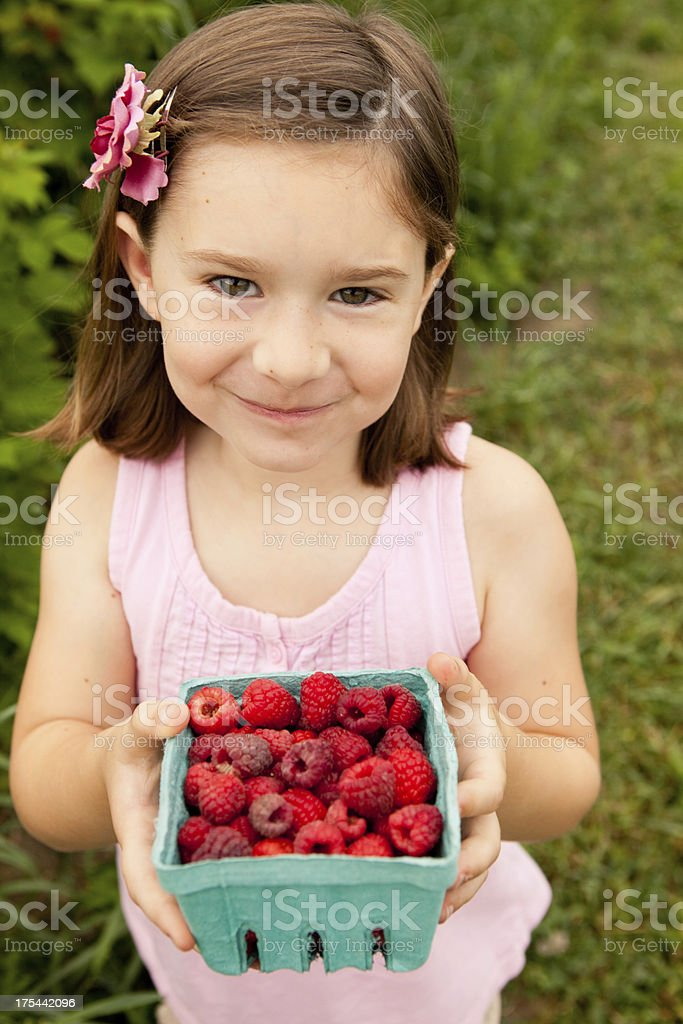 Color Image of Little Girl Showing Raspberries She Picked royalty-free stock photo