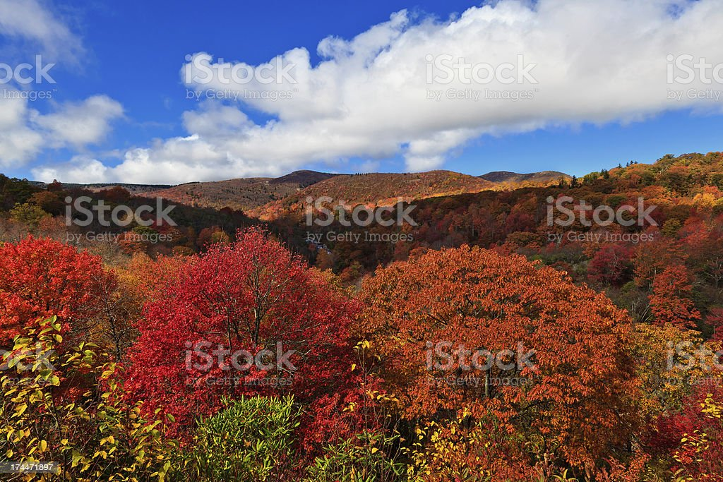 Color in the Mountains stock photo