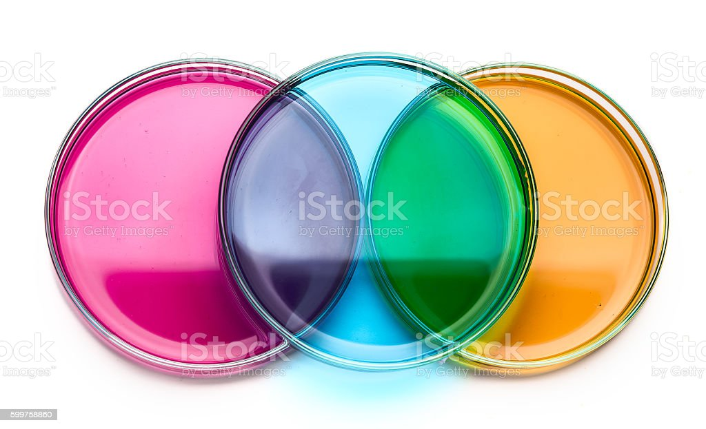 color liquid and petri dishes stock photo