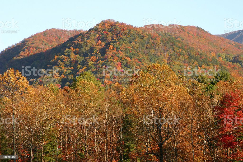 Color of the Cove royalty-free stock photo