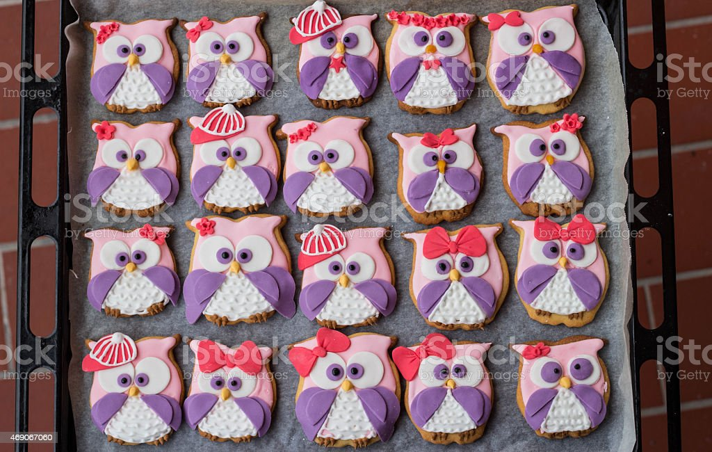 Color owl bakery stock photo