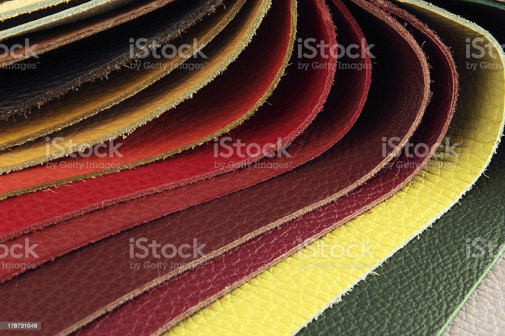 Color palette sample picker of leather material royalty-free stock photo