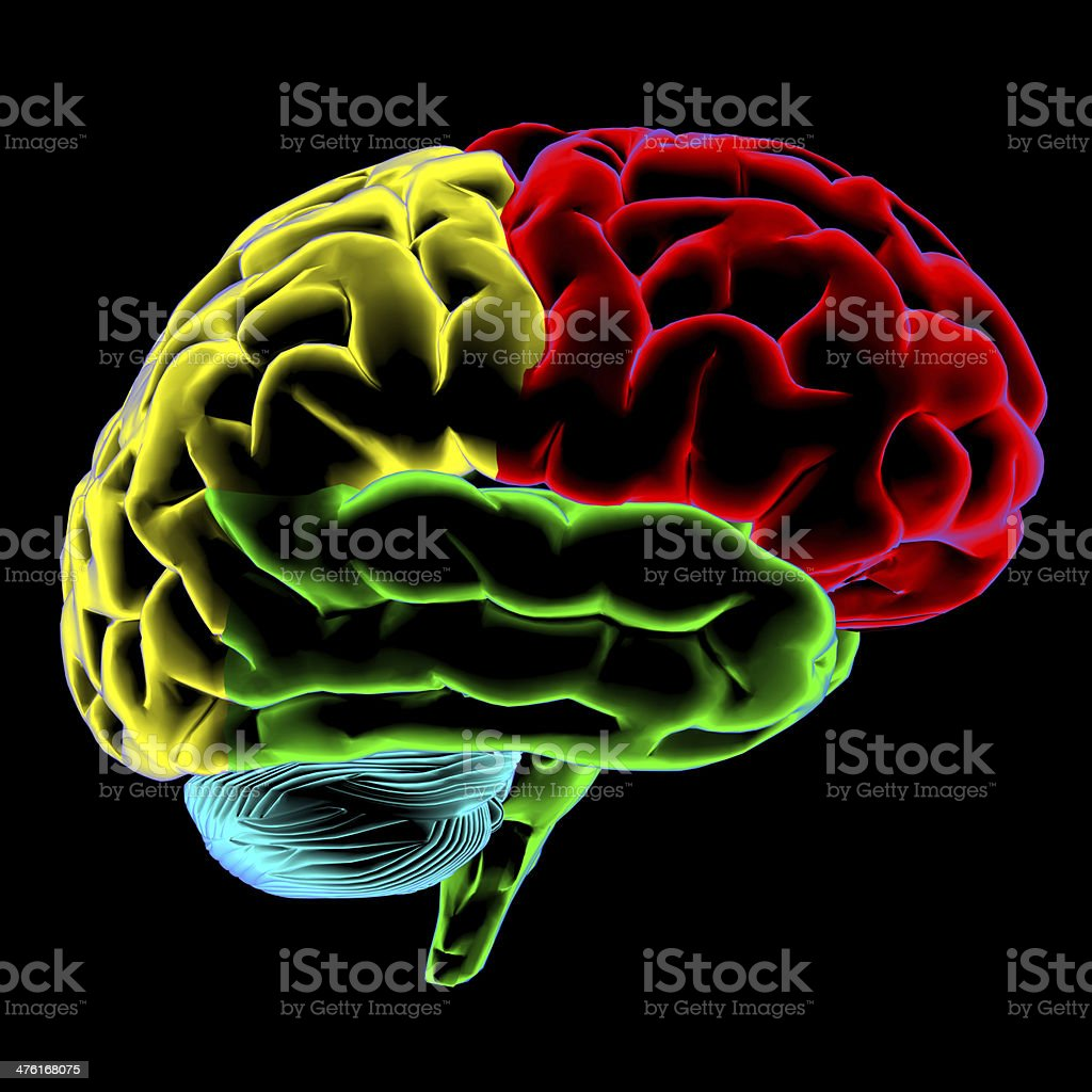 Color scan a person's brain stock photo