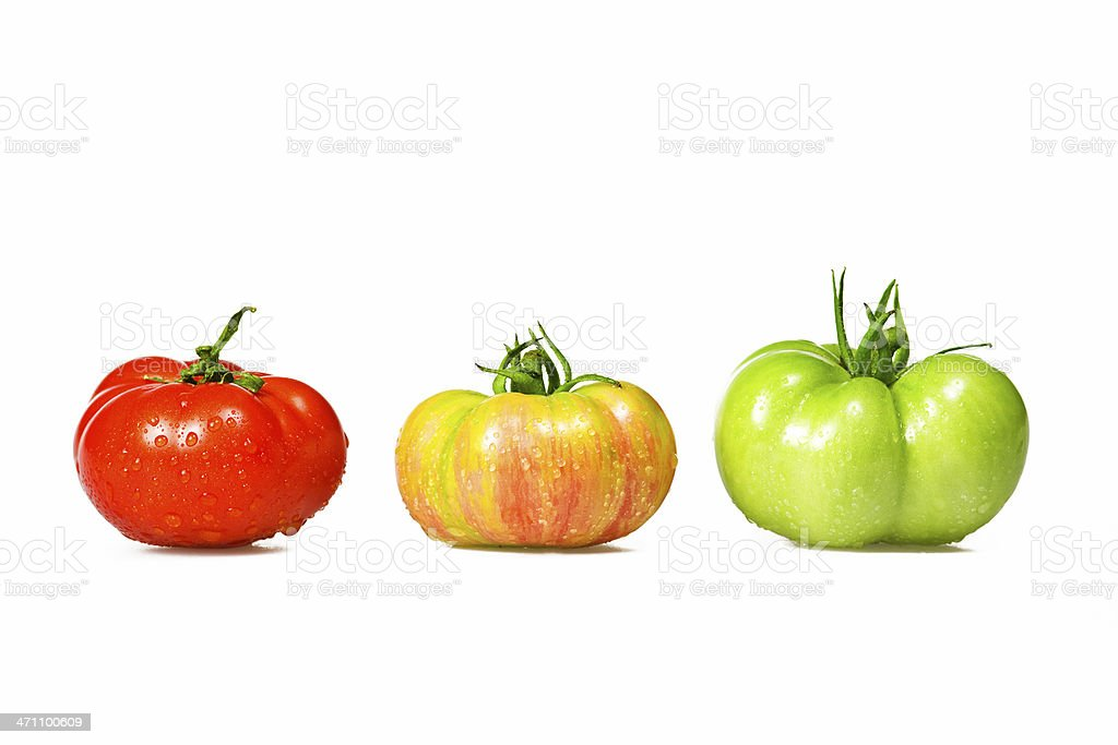 color tomatoes stock photo