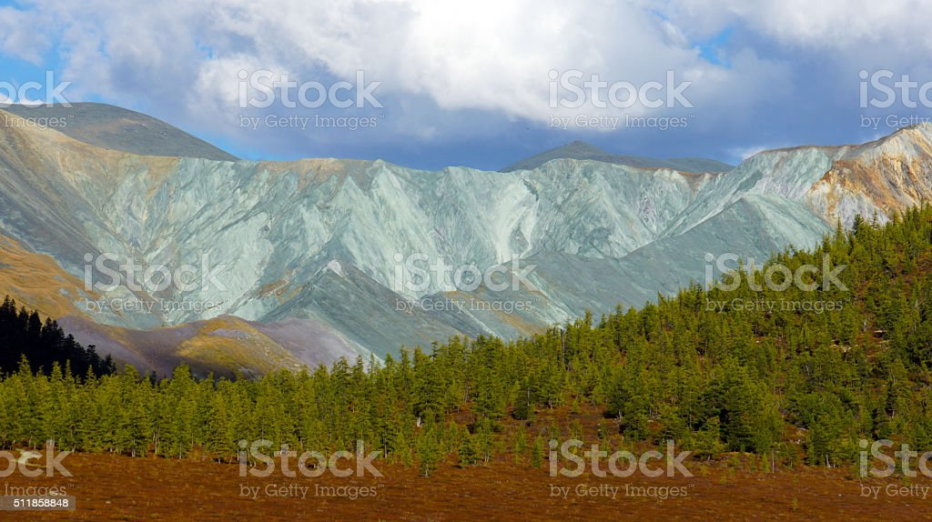 Color valley Yarlu river in Altai mountains stock photo