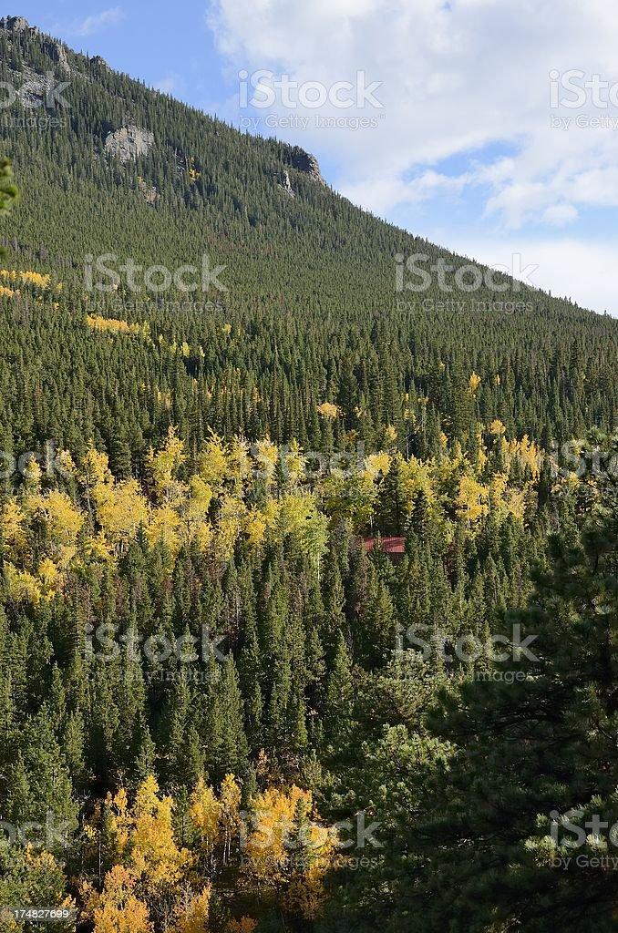Colorado Autumn royalty-free stock photo
