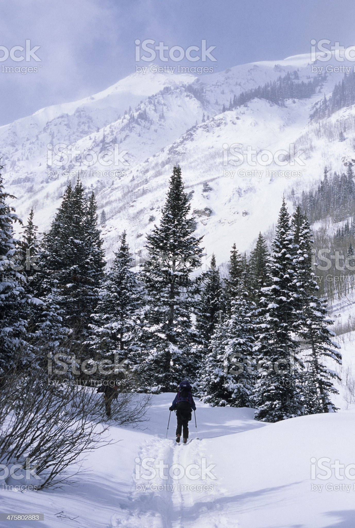 Colorado back country skiers in Elk Mountains royalty-free stock photo
