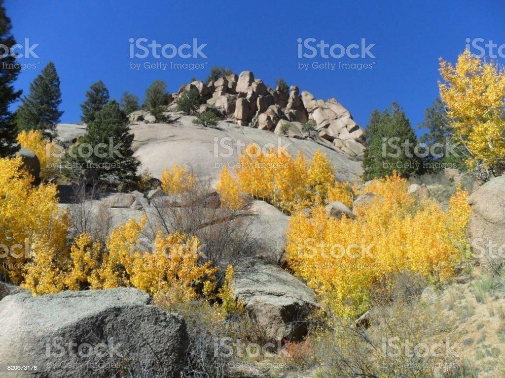 Colorado Fall Colors stock photo