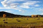 Colorado Farmland Near Boulder