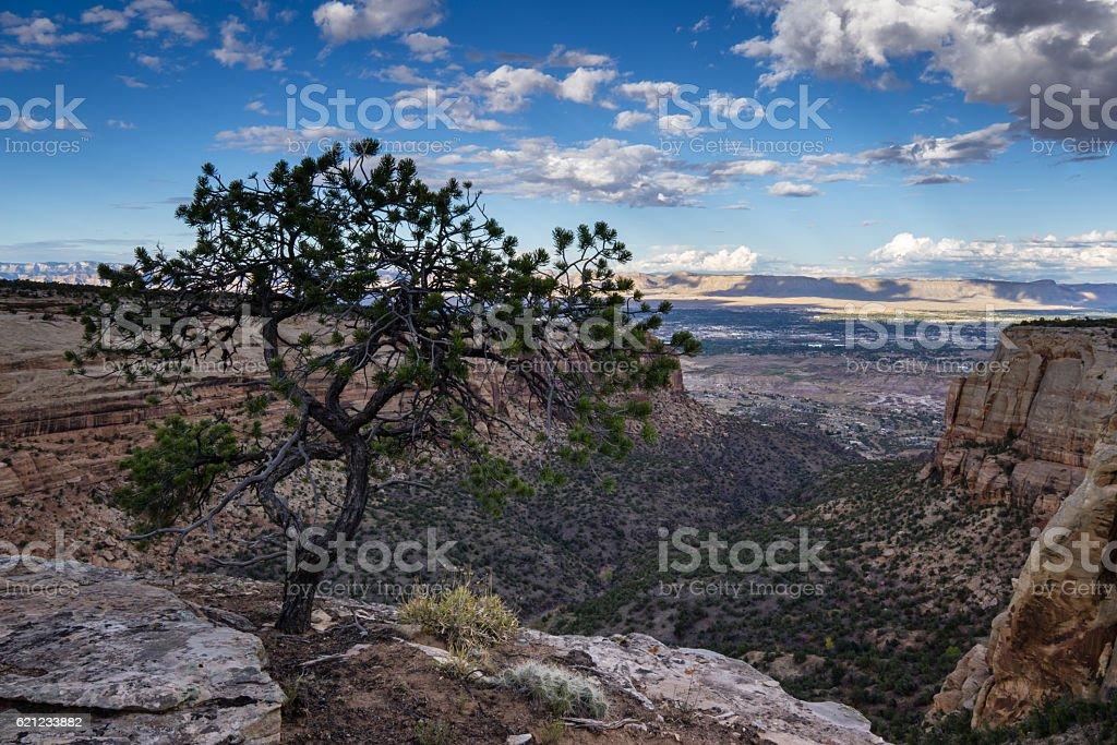 Colorado National Monument stock photo