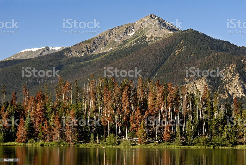 Colorado Rockies stock photo