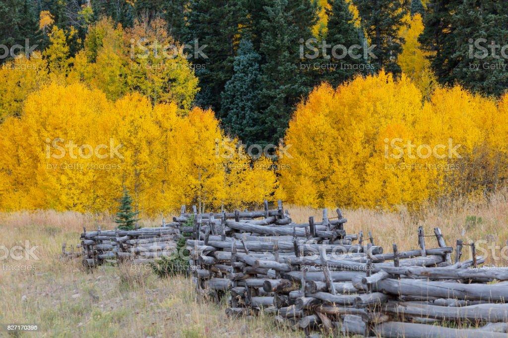 Colorado Rocky Mountain Scenic Beauty stock photo