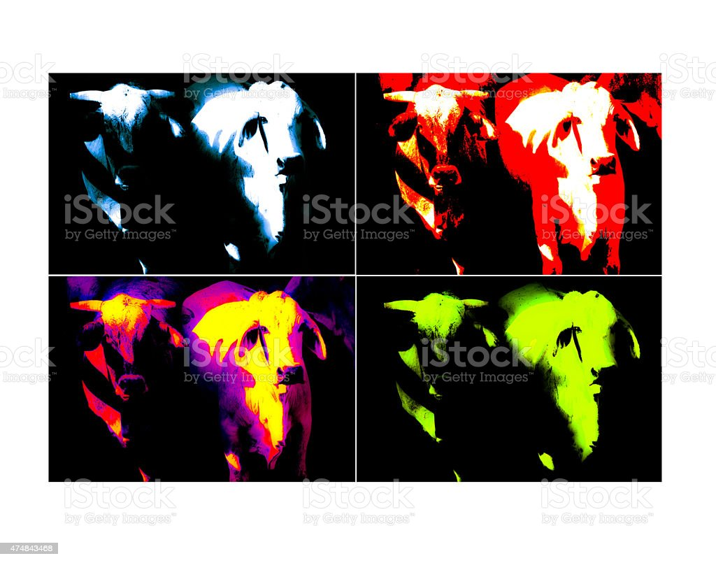 Colored Cows and Bulls -  Warhol Style stock photo