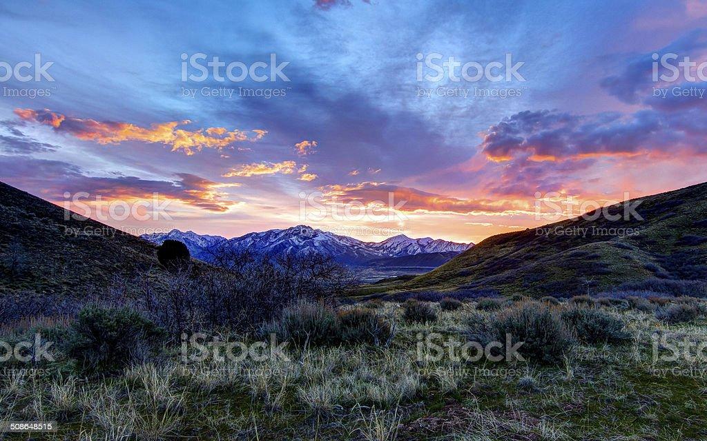 Colored Desert Sunrise stock photo