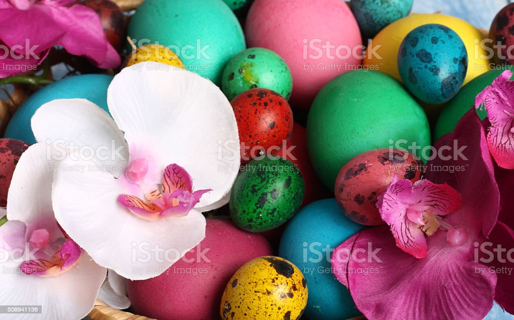 colored Easter chicken and quail eggs stock photo