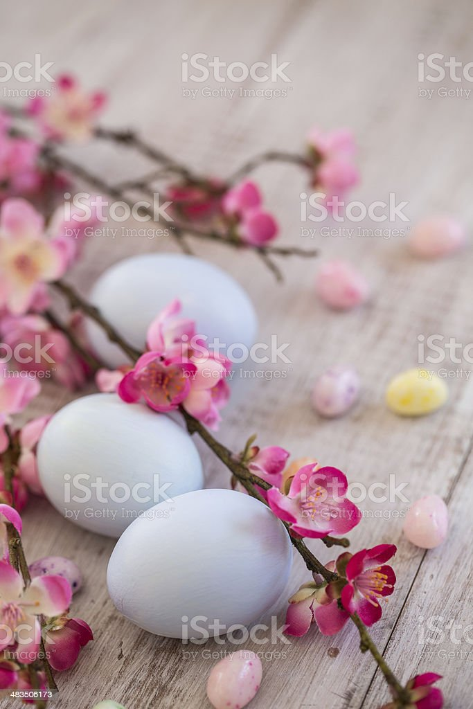 Colored Easter Eggs and jelly beans with Cherry Blossom stock photo